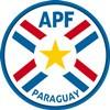Paraguay Drakt 2018