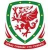 Wales Drakt Barn
